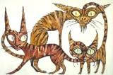Clive Barker - Tarrie Cats